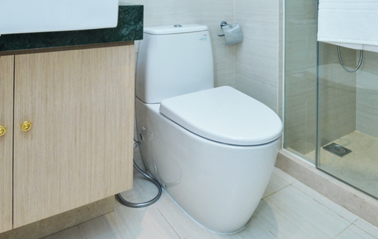 Toilet quickly hygienically fresh and clean!